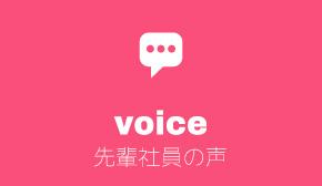 voice 先輩社員の声